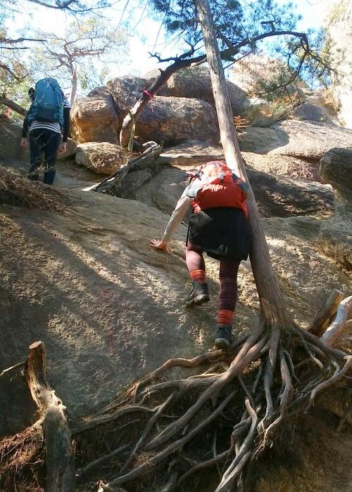 奇岩の山、金勝(こんぜ)アルプスを歩きました_c0038434_22561844.jpg