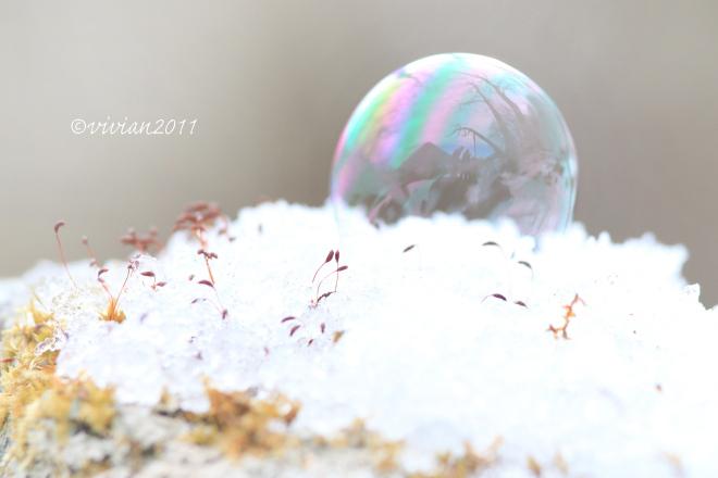 特別撮影会 ~冬の奥日光へ再び~_e0227942_17100265.jpg