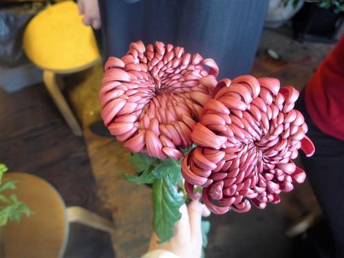 花修行~「鮨 波やし」さんの2020年2月のお花~_f0232060_21194560.jpg