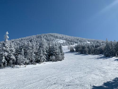 天元台スキー!_a0044162_16161645.jpg