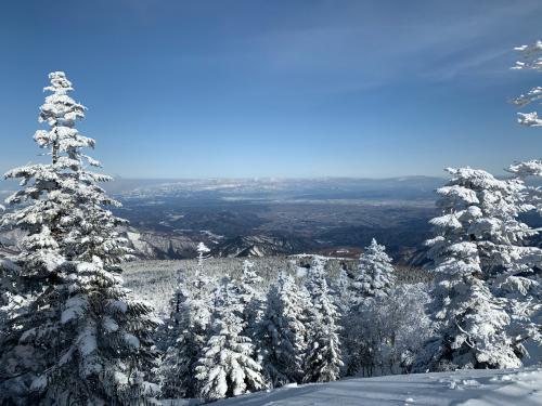 天元台スキー!_a0044162_16205504.jpg