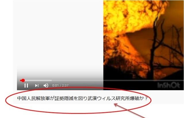武漢 ウイルス 研究 所 爆発 武漢ウイルス研究所 - Wikipedia