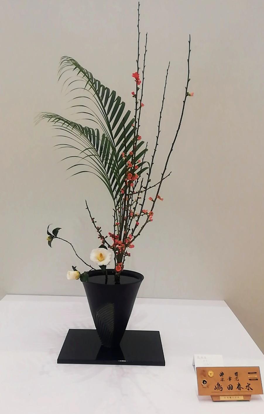 池坊佐賀県連合支部創立100周年記念いけばな池坊展 前期_d0195183_00130125.jpg