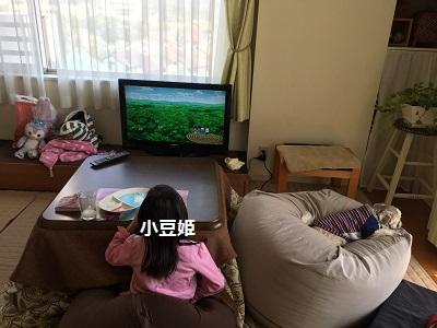小豆姫の襲撃とリメイクスカート♪_f0372998_22290647.jpg