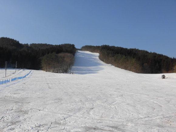 令和2年2月25日(火)天気/晴 気温/-1℃ 積雪/20㎝ 一部滑走可能_e0306207_08415510.jpg