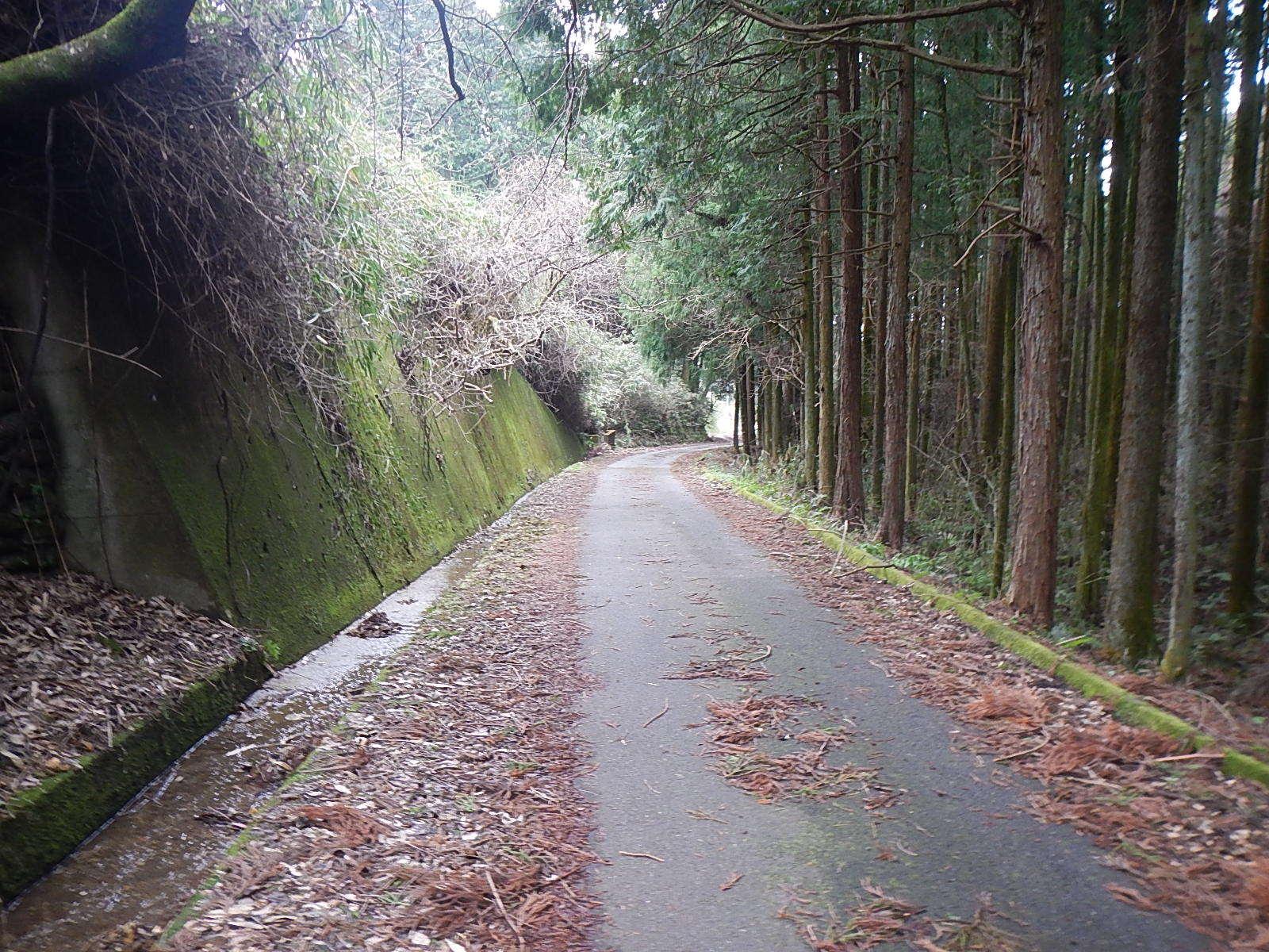 サイクリング日記①_a0386742_09151063.jpg