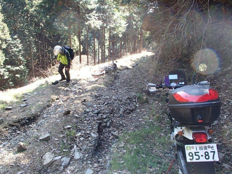 檜原村方面の林道現地調査_f0119755_16085122.jpg