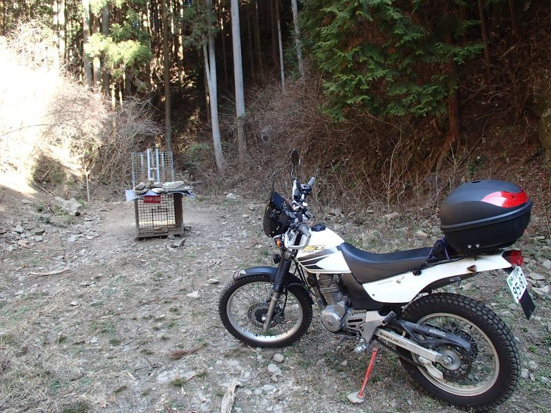 檜原村方面の林道現地調査_f0119755_16085156.jpg