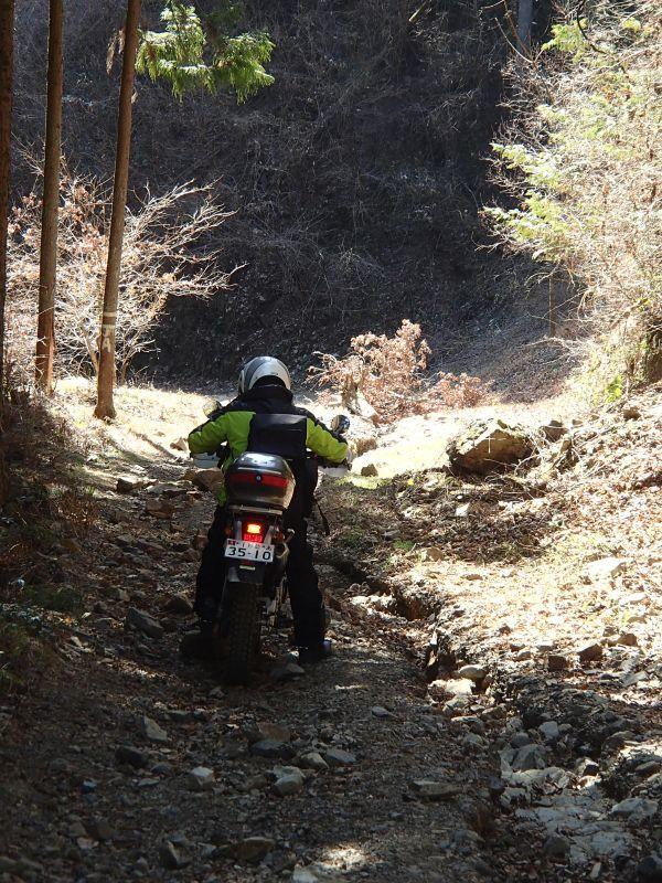 檜原村方面の林道現地調査_f0119755_16085214.jpg