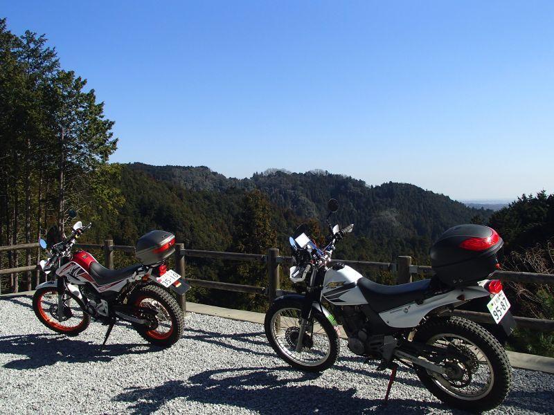 檜原村方面の林道現地調査_f0119755_16085235.jpg