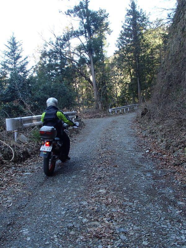 檜原村方面の林道現地調査_f0119755_16085294.jpg