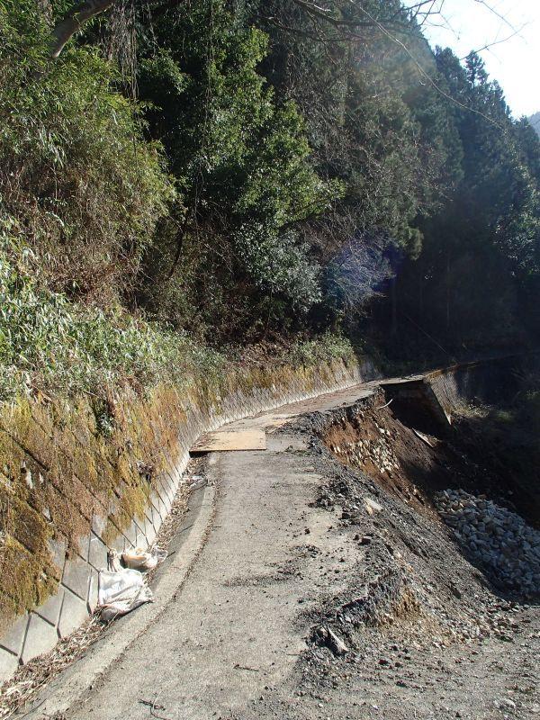 檜原村方面の林道現地調査_f0119755_16365571.jpg