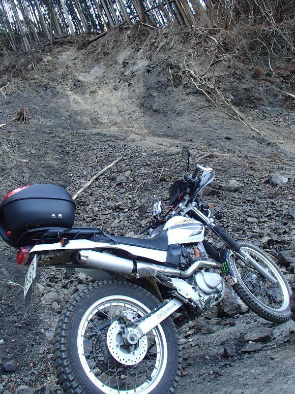 檜原村方面の林道現地調査_f0119755_16554941.jpg