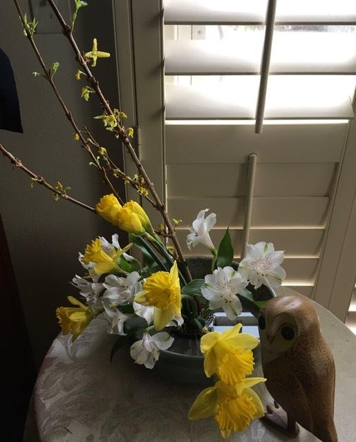 水仙とチューリップで春を楽しむ_e0350971_13074617.jpg