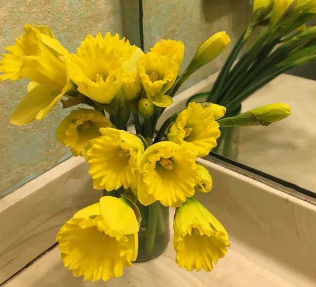 水仙とチューリップで春を楽しむ_e0350971_13080086.jpg