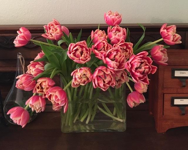 水仙とチューリップで春を楽しむ_e0350971_13084937.jpg