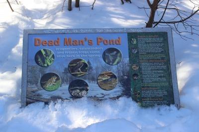 Dead Man\'s Pond_c0353373_01305339.jpg