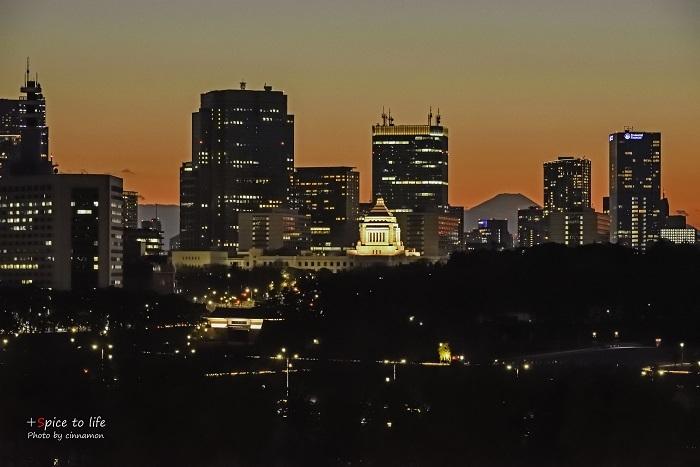 Tokyo 富士san SPOT #7_f0326278_23435380.jpg