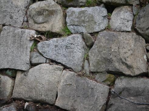 名古屋城本丸搦手馬出周辺石垣現地説明会に約10名_d0011701_13345711.jpg