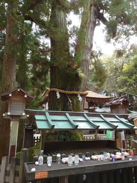 大神神社(おおみわじんじゃ)奈良県桜井市_a0122205_17141116.jpg