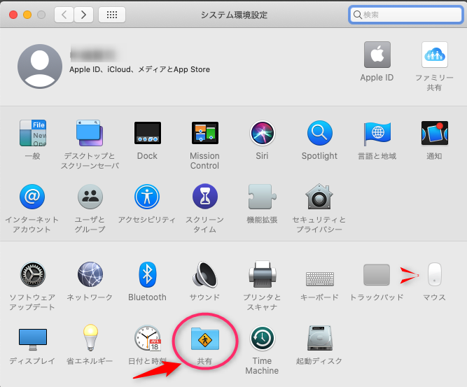 Windows から Mac へ MobaXterm で VNC デスクトップ共有接続_a0056607_11045223.png