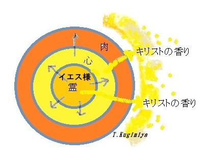 No.382 地の塩、世の光として 2020.2.23_c0265111_18595806.jpg