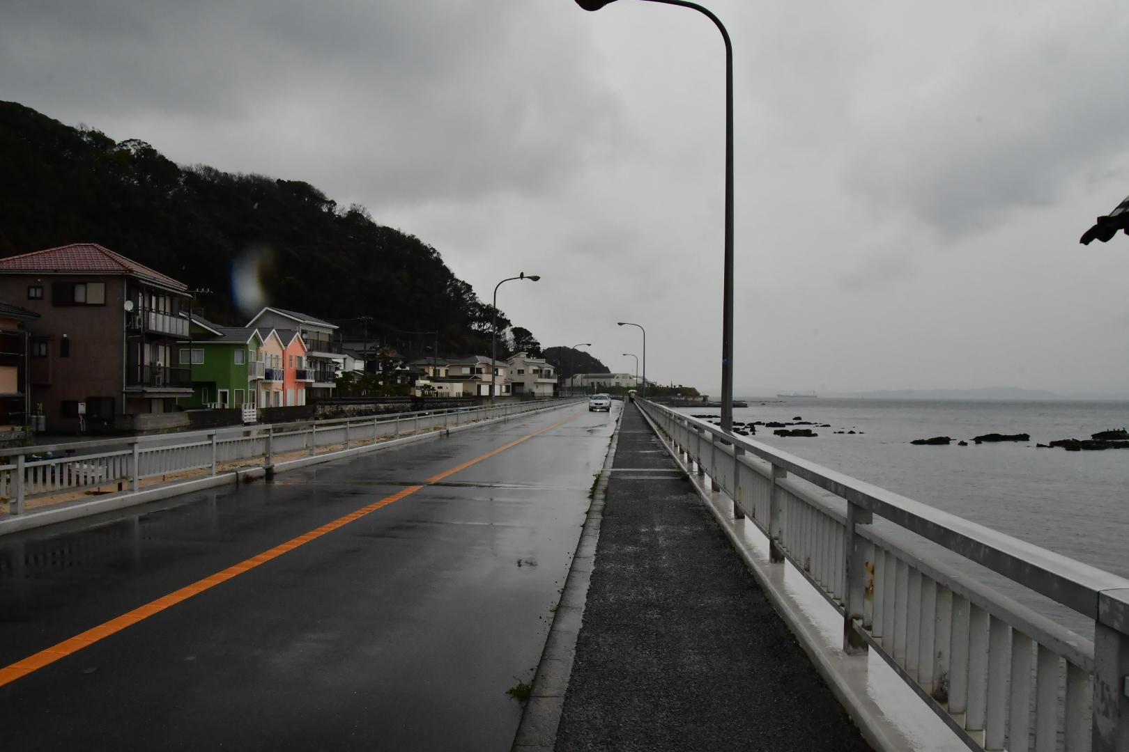 Rain 2020 2月_b0223512_23242638.jpg