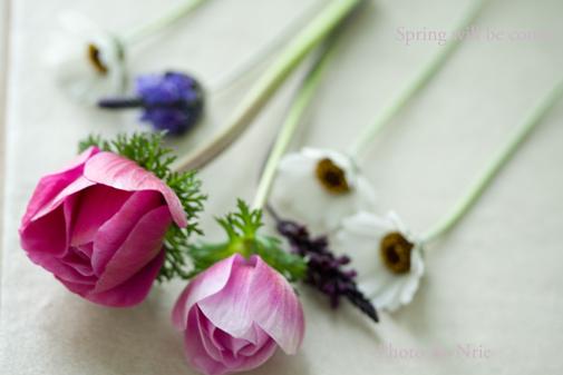 お庭の春を家でも楽しもう。_a0329414_21583225.jpg