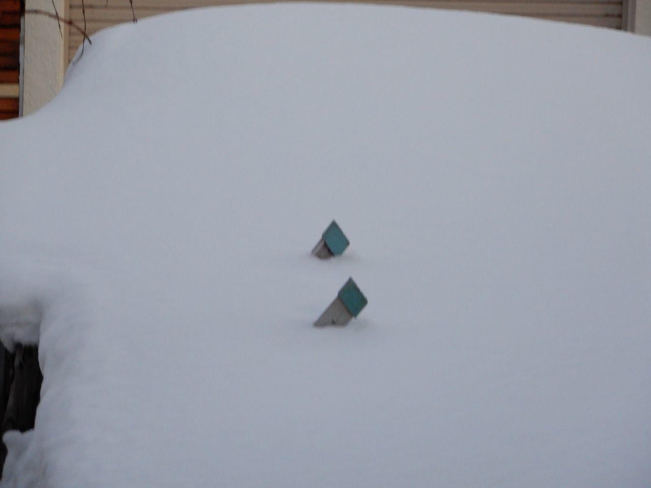 気温の割には雪がとけた_c0025115_22321743.jpg