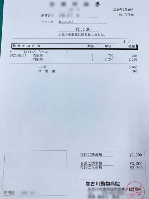 れんちゃん医療費のご報告_d0355333_14065001.jpg