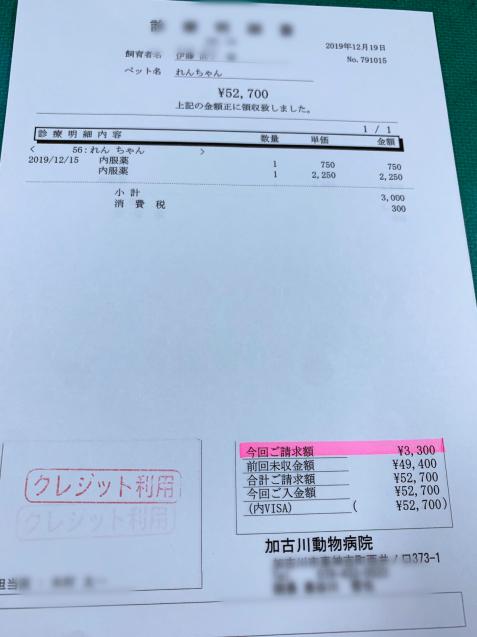 れんちゃん医療費のご報告_d0355333_14103838.jpg