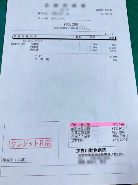 れんちゃん医療費のご報告_d0355333_14105738.jpg