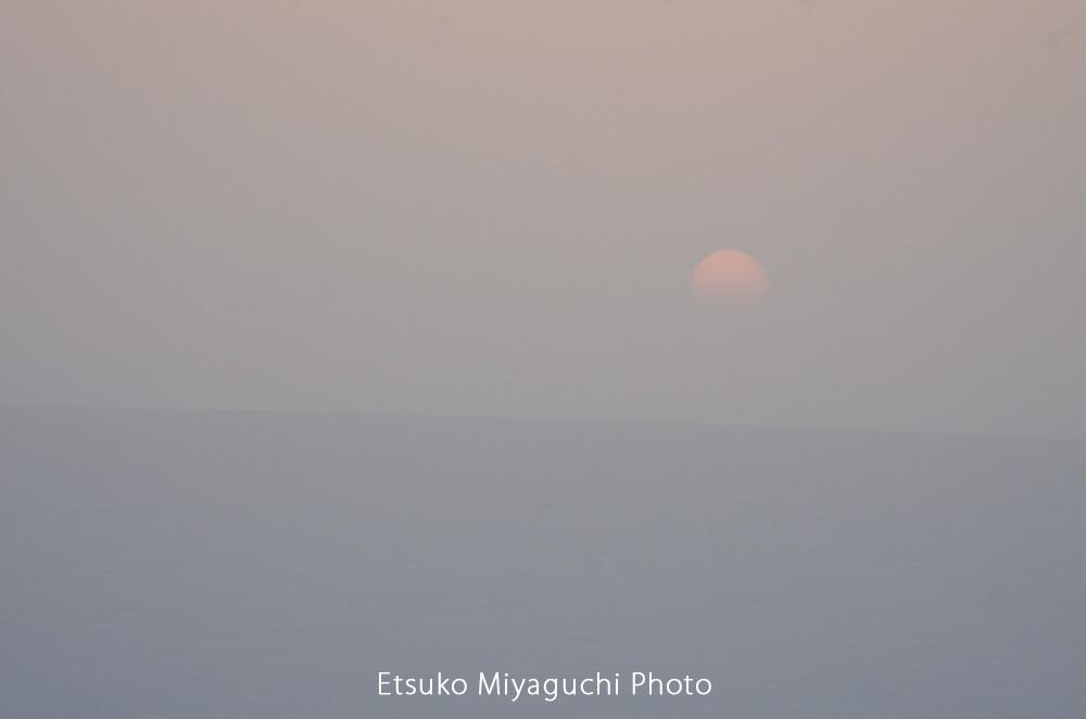 霧の中からおはよう_f0152939_10433614.jpg