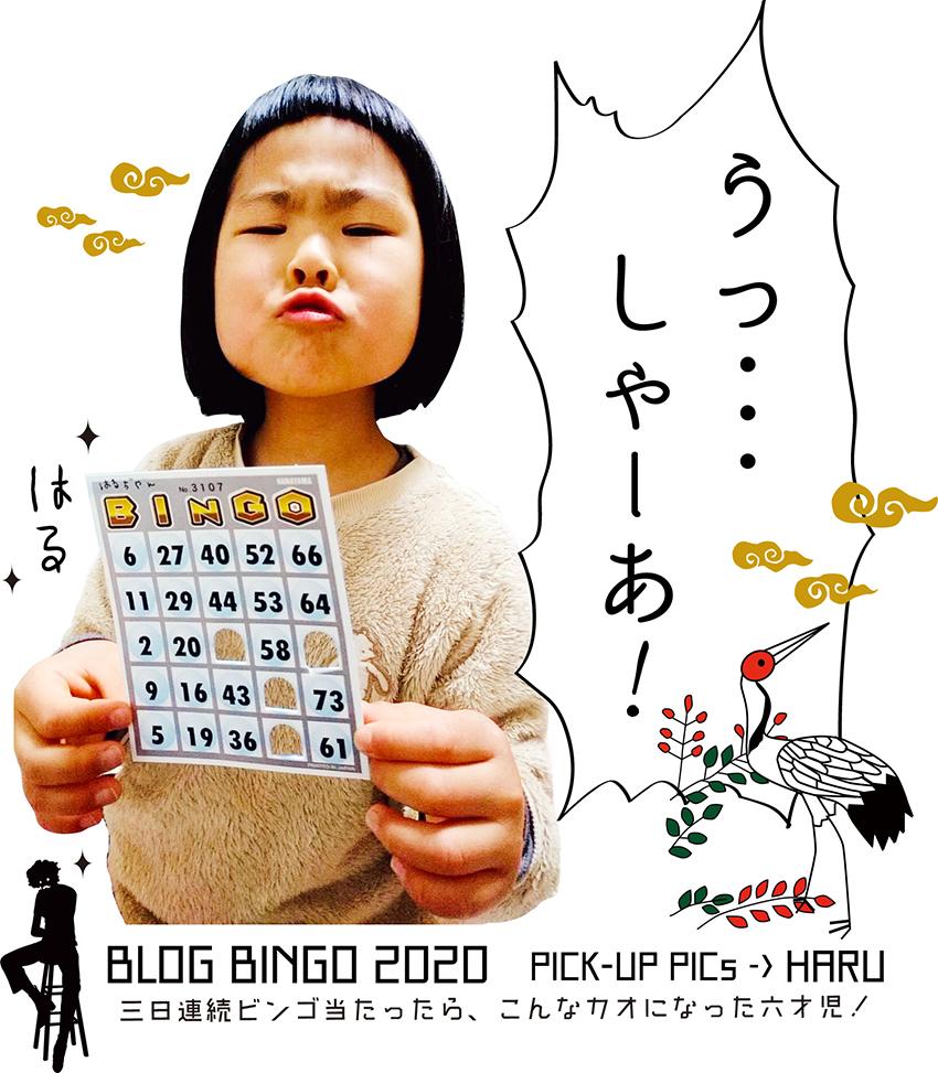 【BLOG BINGO 2020】PICK-UP PICs :  3日連続ビンゴ当たって雄叫びを上げる6歳児の図。_d0018646_23225934.jpg