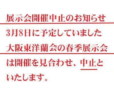 朱粋紅                            No.2011_d0103457_23255646.jpg
