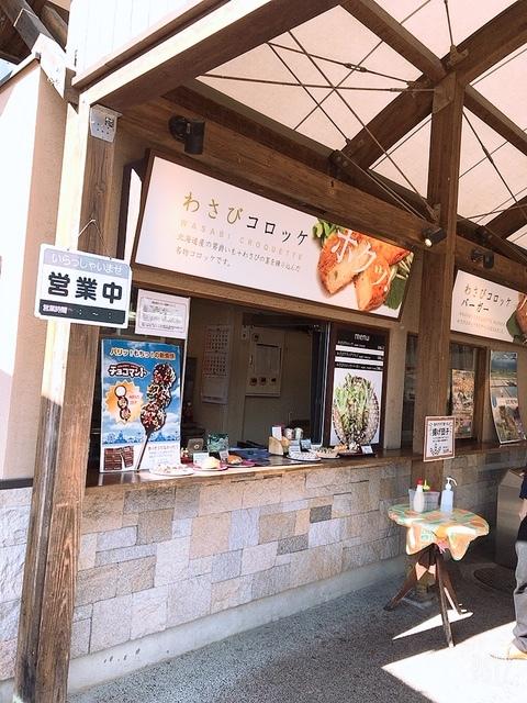 長野旅行✈_b0347262_17265317.jpeg