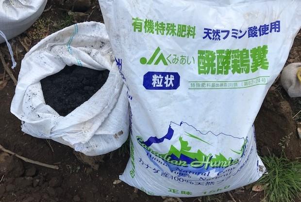 3種類のサトイモの種芋植え付け2・25_c0014967_12385150.jpg