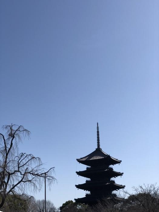京都 東寺 先斗町と祇園_d0105967_20592315.jpeg