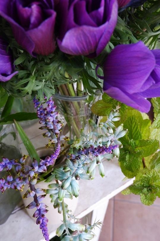 オークリーフ(紫色の花たち)_f0049672_18365792.jpg