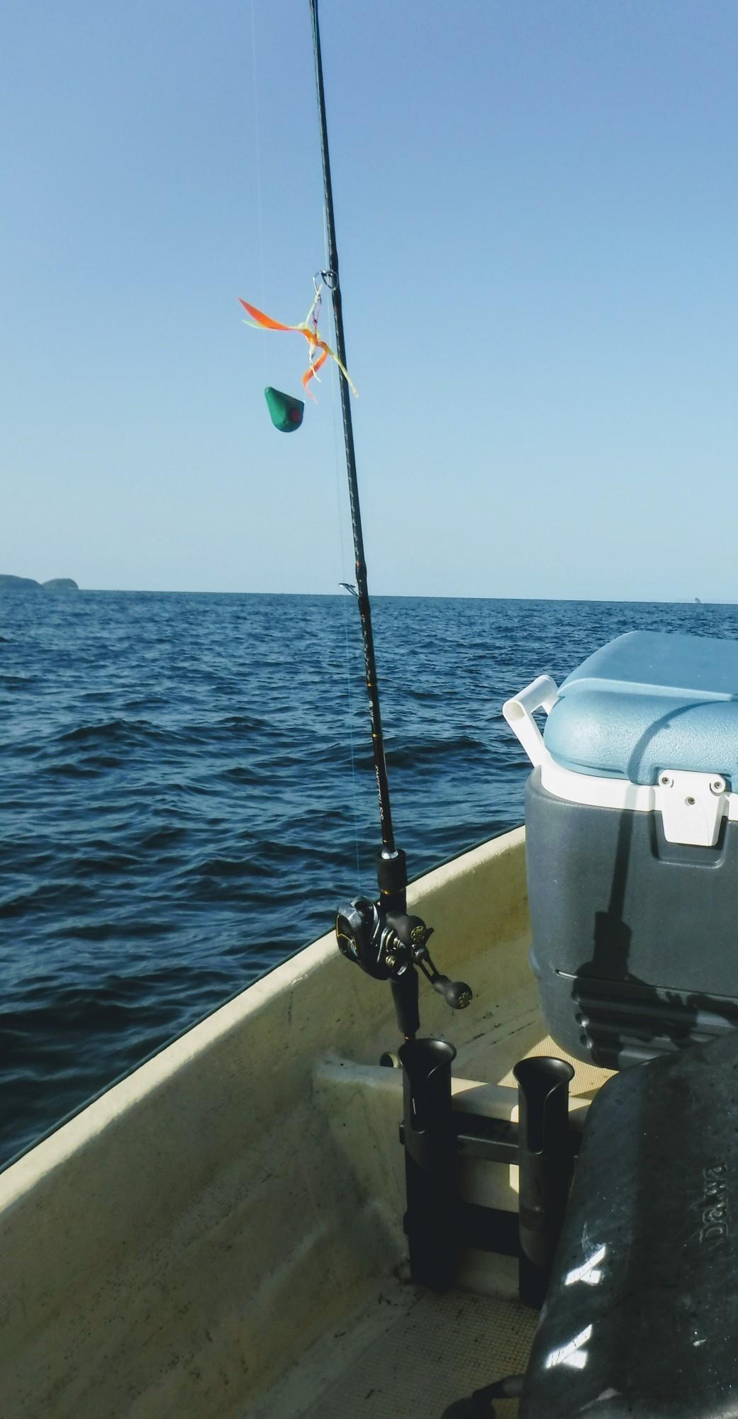 船釣りして刺身_d0195183_22031783.jpg