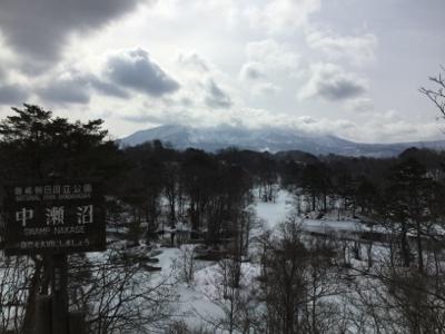 雪の上に落っこちてるもの探し?_a0096989_11172161.jpg