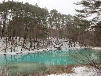 「冬のフィールドはあっちの世界が見える!」_a0096989_14083774.jpg