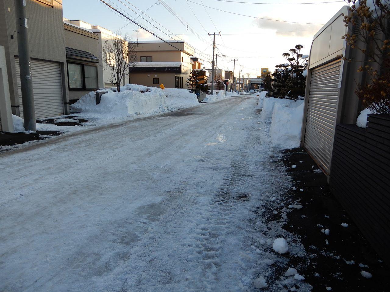 いきなり道路が春になっていた_c0025115_22474820.jpg