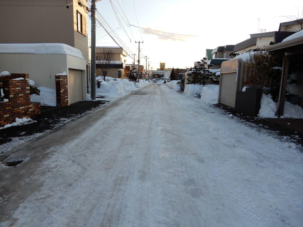 いきなり道路が春になっていた_c0025115_22500227.jpg