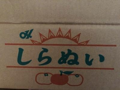 堀内農園_d0163620_08404457.jpeg