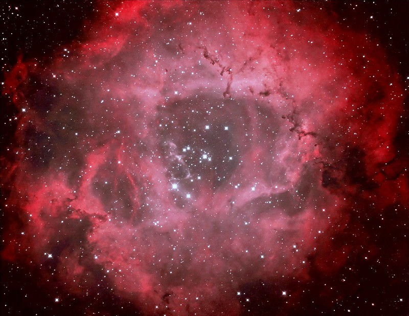 マチナカのバラ星雲_c0061727_07331873.jpg