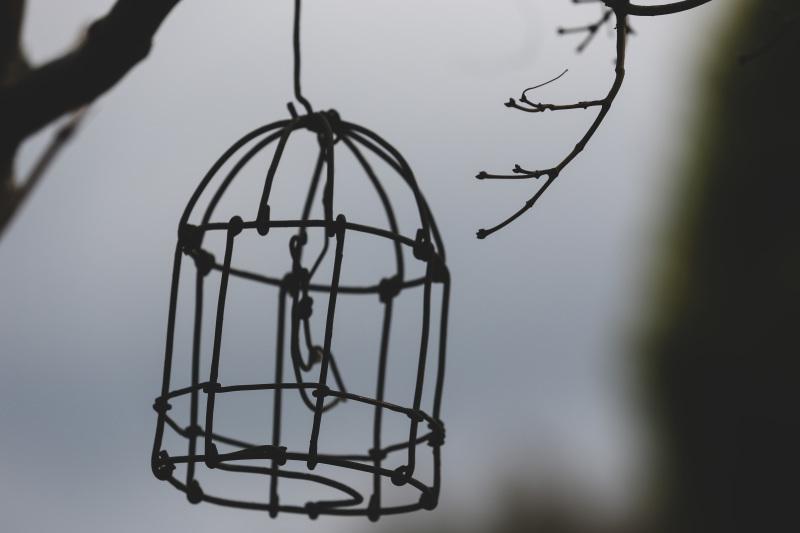 桜のシナモンロール_d0034447_18062357.jpeg