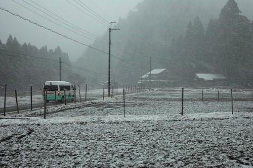 吹雪の散歩・・・新型コロナウイルスで自粛を_d0005250_17101965.jpg