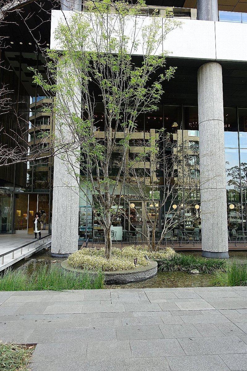グランフロント大阪 ザ・ガーデン_c0112559_08260286.jpg