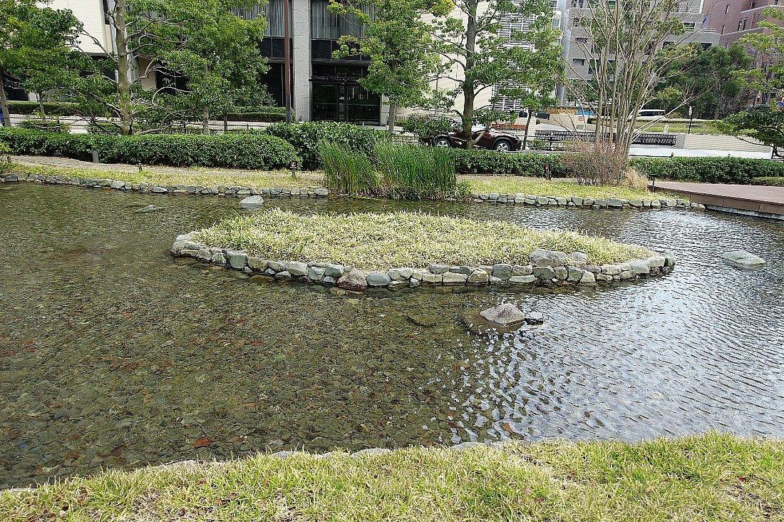 グランフロント大阪 ザ・ガーデン_c0112559_08333780.jpg